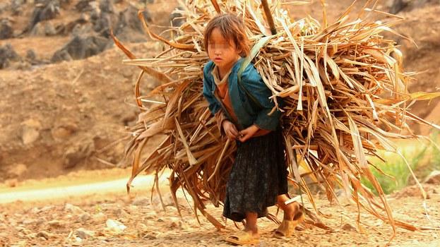 CHILD-WORKING.jpg
